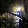Sturmschäden/Hochwasser/Hangsicherung